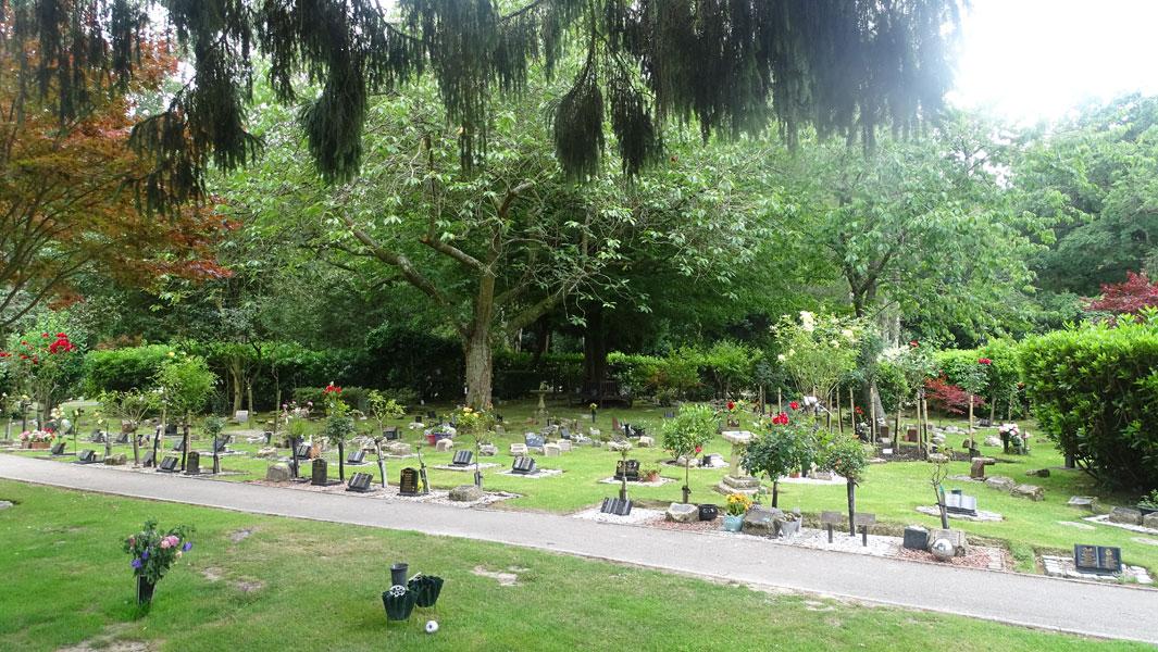 Funeral Service Surrey & Sussex Crematorium